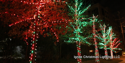 ignite-christmas-lighting-2