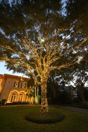 Residential Exterior Lighting